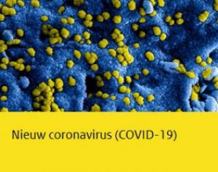 COVID-19 virus update
